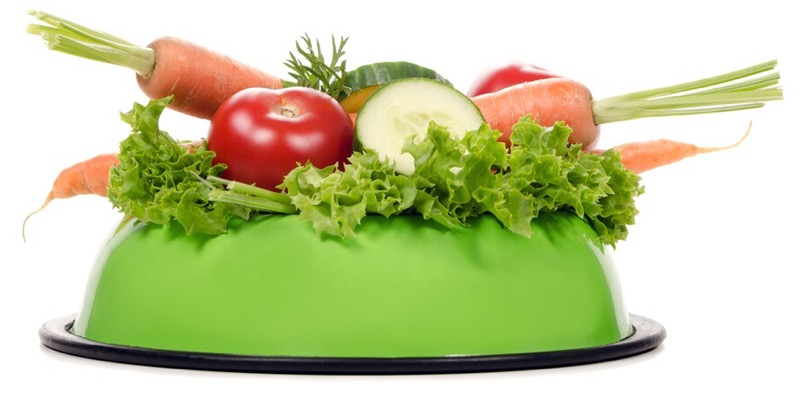 Vegetables in a shih tzu's feeding bowl.