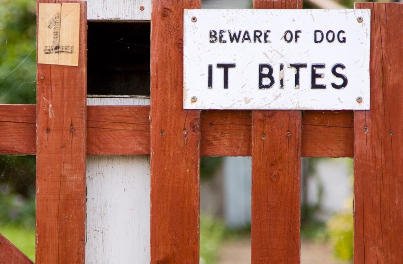 Beware of the dog - it Bites!