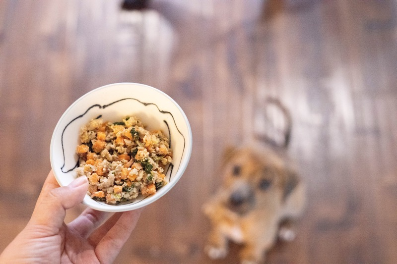 What is the best all natural dog food?