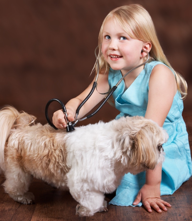 A little girl plays at being a vet to her pet dog.