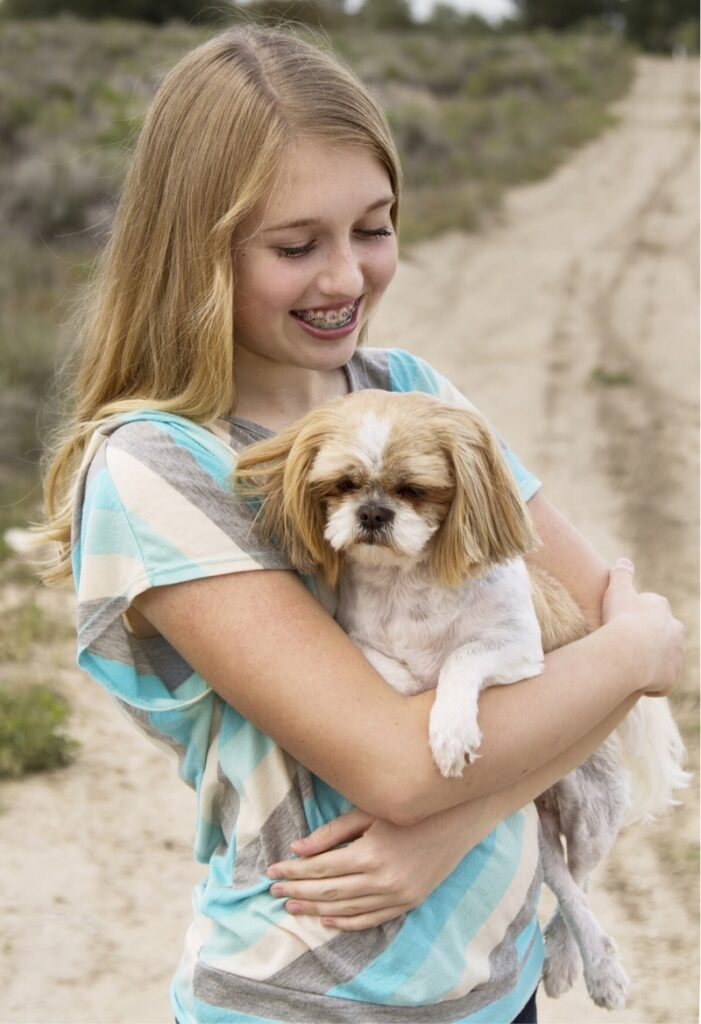 Develop a loving and trusted relationship with your shih tzu.