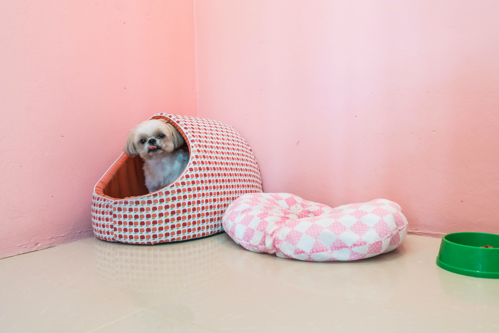 A shih tzu in a cave style bed.