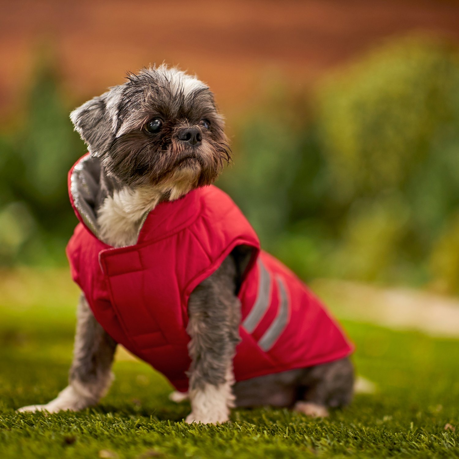 Frisco Reflective Insulated Dog Coat With Thermal Lining