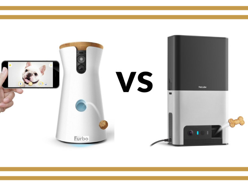 Furbo vs Petcube Bites 2 – Which Is Best?