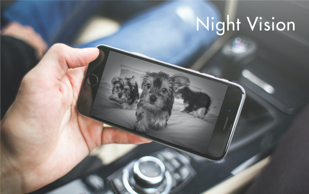 Both Furbo and Petcube Bites 2 cameras have good night vision features.