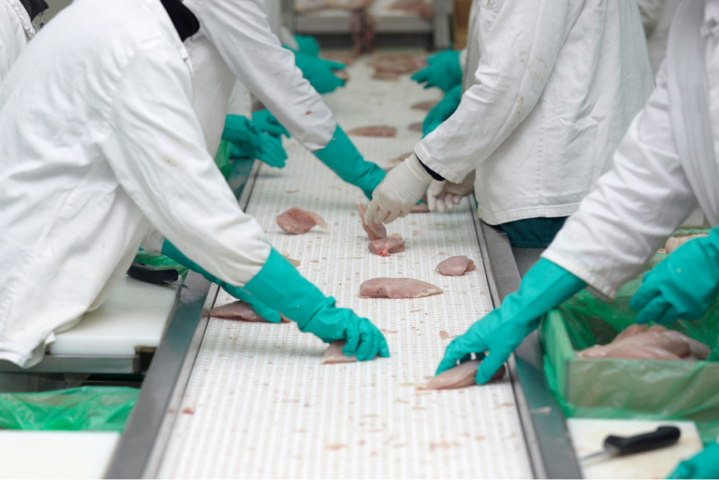 The safe handling of food during processing is essential.